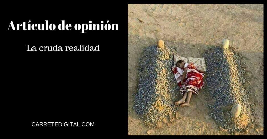 Artículo de opinión, La cruda realidad