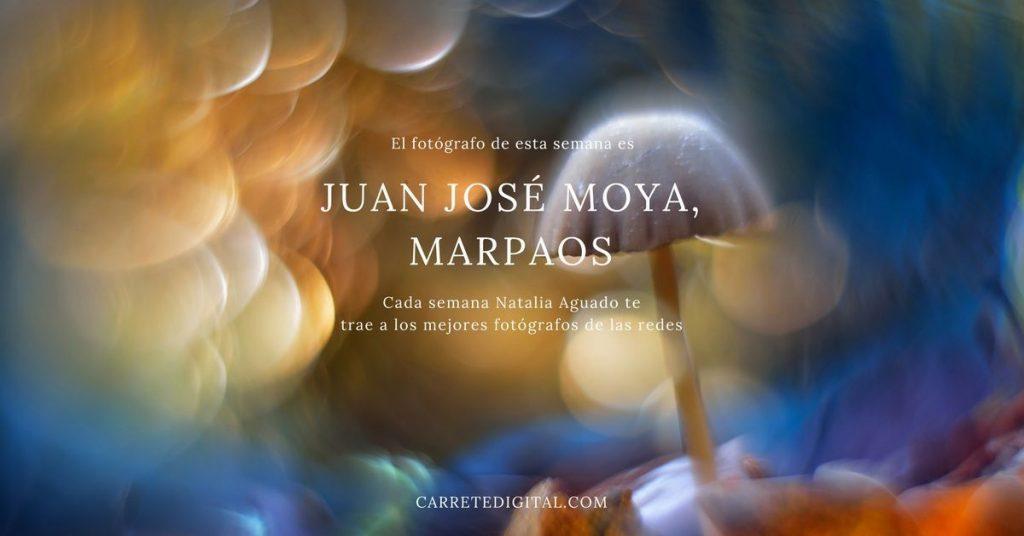 Juan josé moyamarpaos