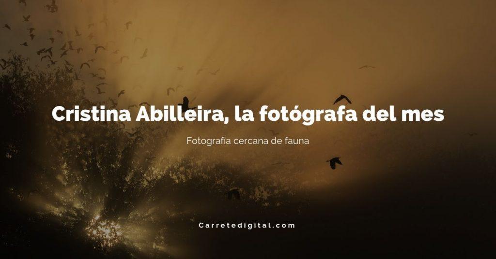 Carretedigital.com